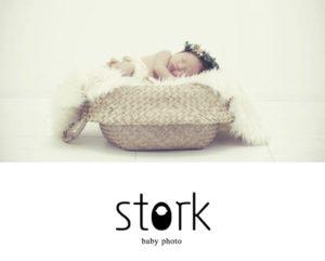 webサイトデザイン,storkbabyphoto